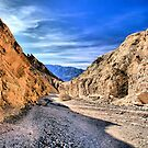 "Death Valley-""Follow Me"" by Rosalee Lustig"