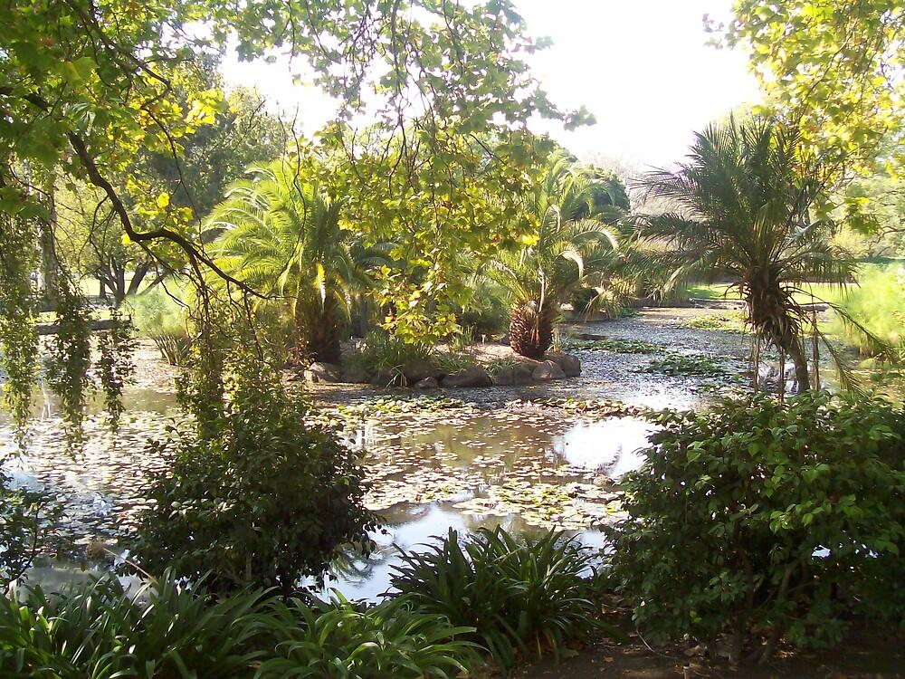 Garden by monica98