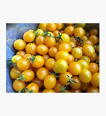 Heirloom Cherry Tomatoes Photographic Print