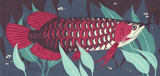 """arowana"" Posters by panthervogel | Redbubble"
