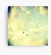 Two Birds in the sky Canvas Print