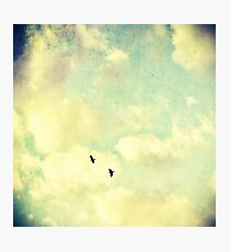 Two Birds in the sky Photographic Print