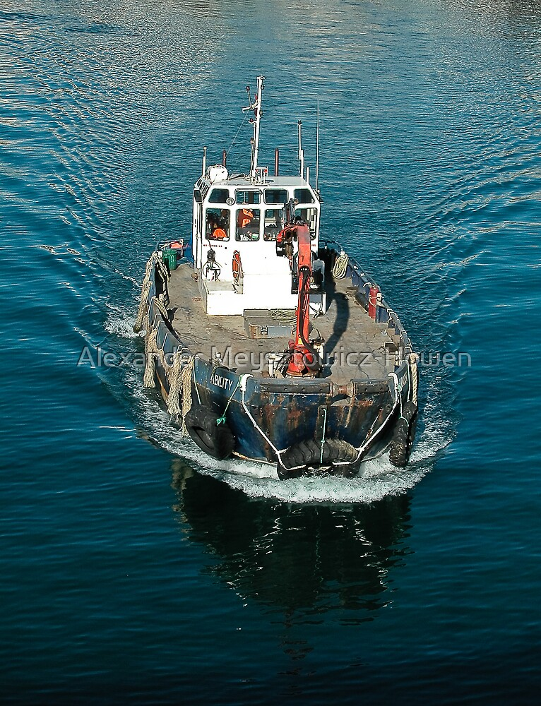 Working boat by Alexander Meysztowicz-Howen