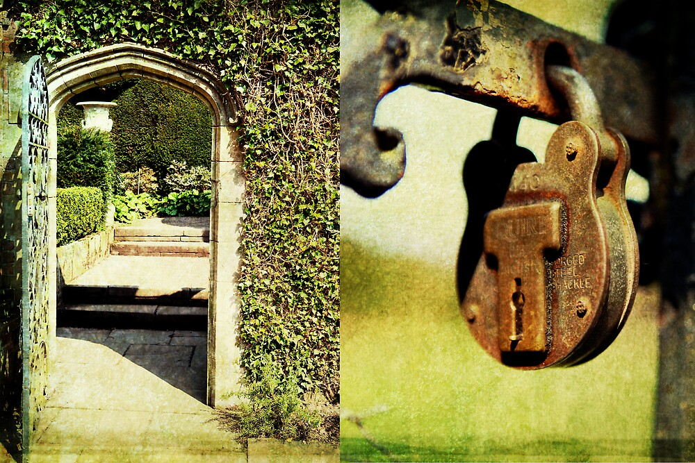 Tatton Park by AlexDPhoto