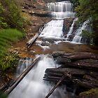 Lady Barron Falls by Travis Easton