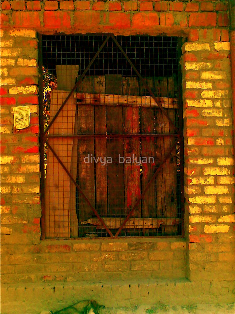 door by divya  balyan