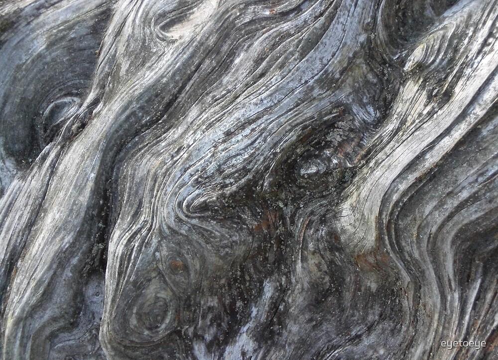 Swirly Tree Trunk by eyetoeye