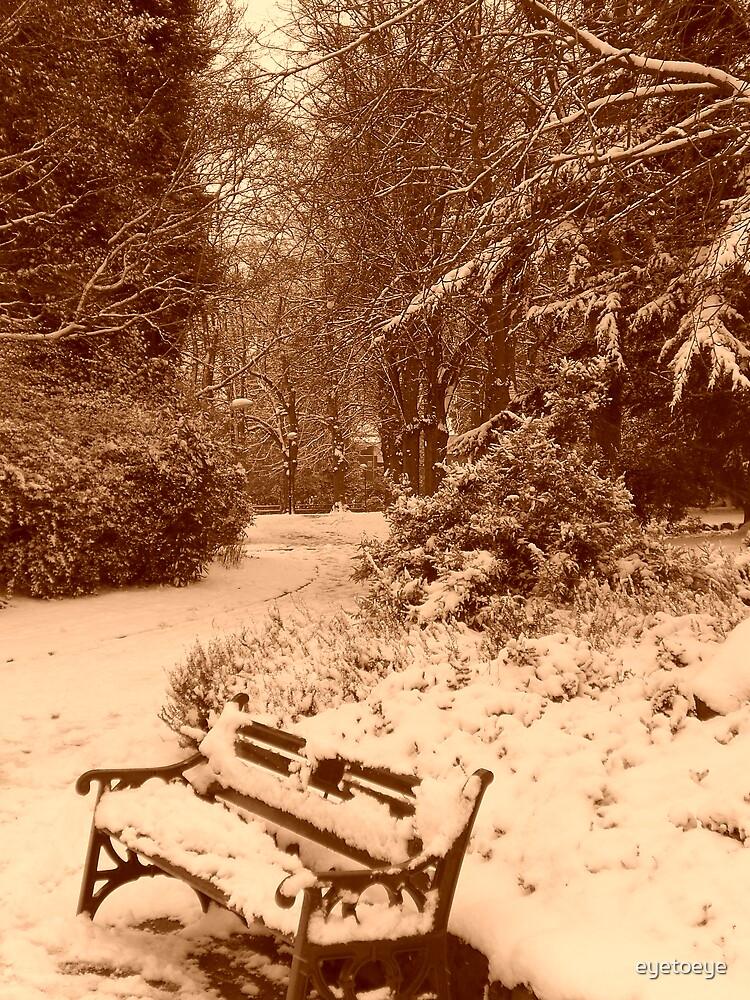 Winter Wonderland by eyetoeye