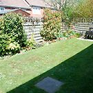 Dougies Garden by dougie1
