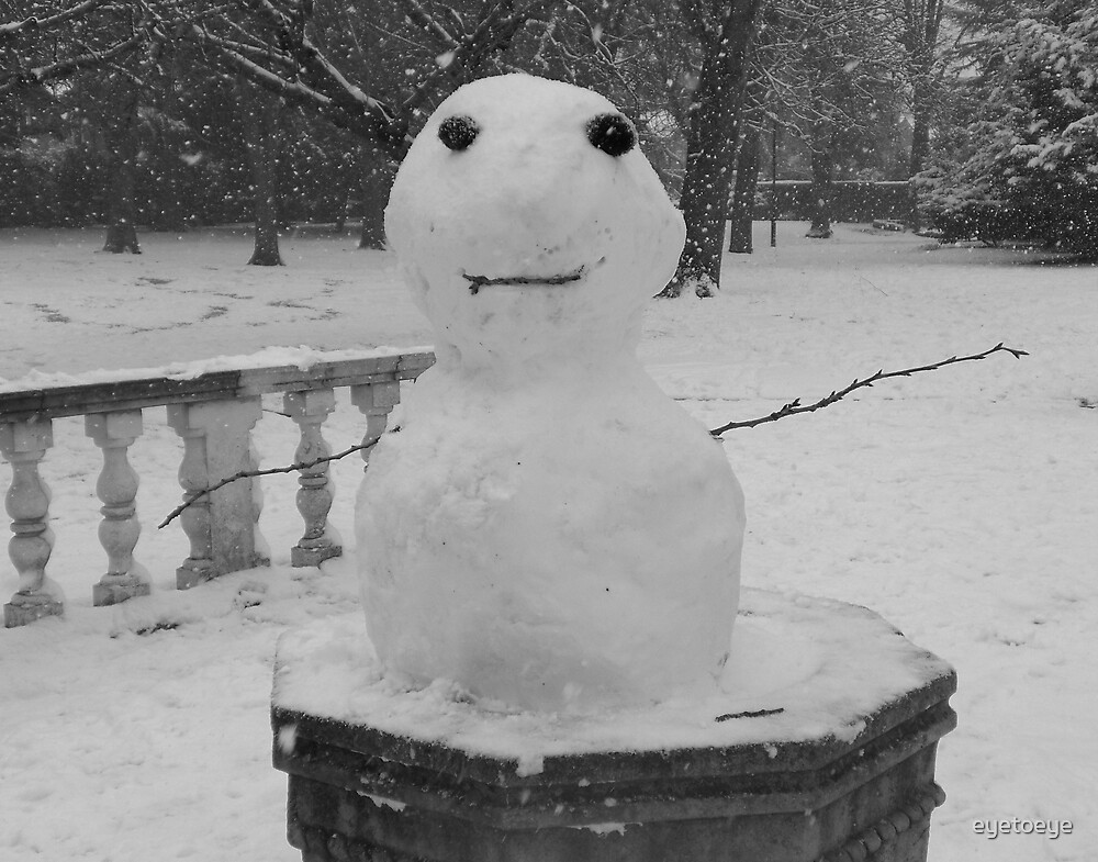 Mini Snowman by eyetoeye