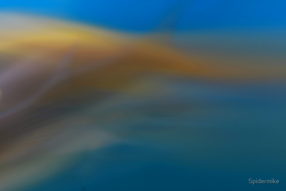 Aqua Abstract by Spidermike