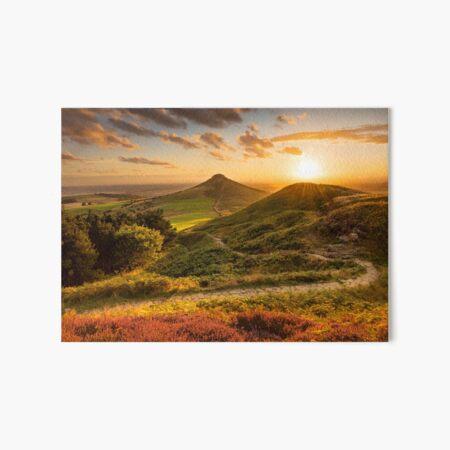 Path to Roseberry, North York moors, UK Art Board Print