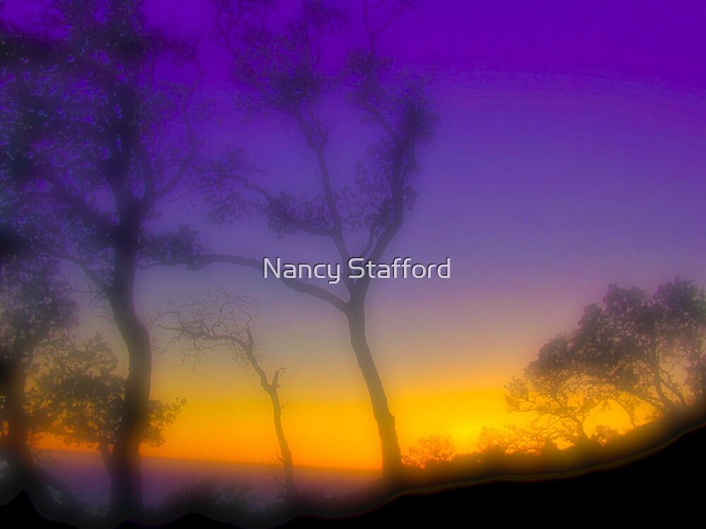 Dawn's Color by Nancy Stafford