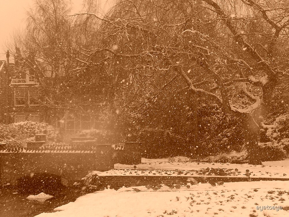 Falling Snow by eyetoeye