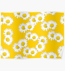 White and Yellow Daisy Poster