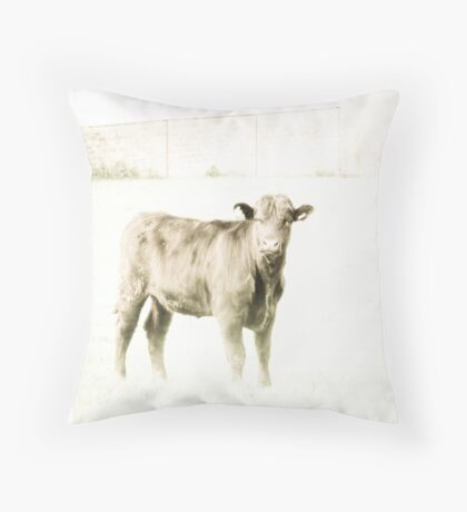 High key heifer Throw Pillow
