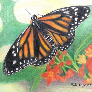 Monarch Butterfly by RiseAndConquer