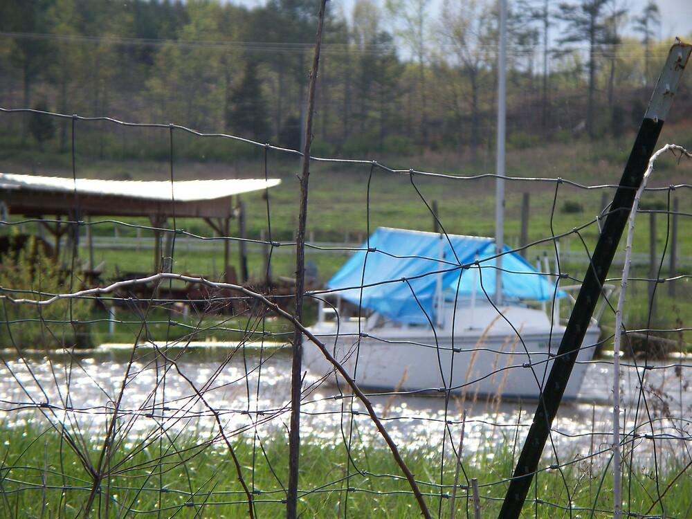 Redneck Sailboat by ladyant