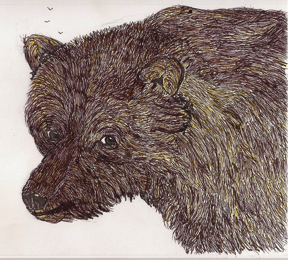 Grizzly Bear by GEORGE SANDERSON