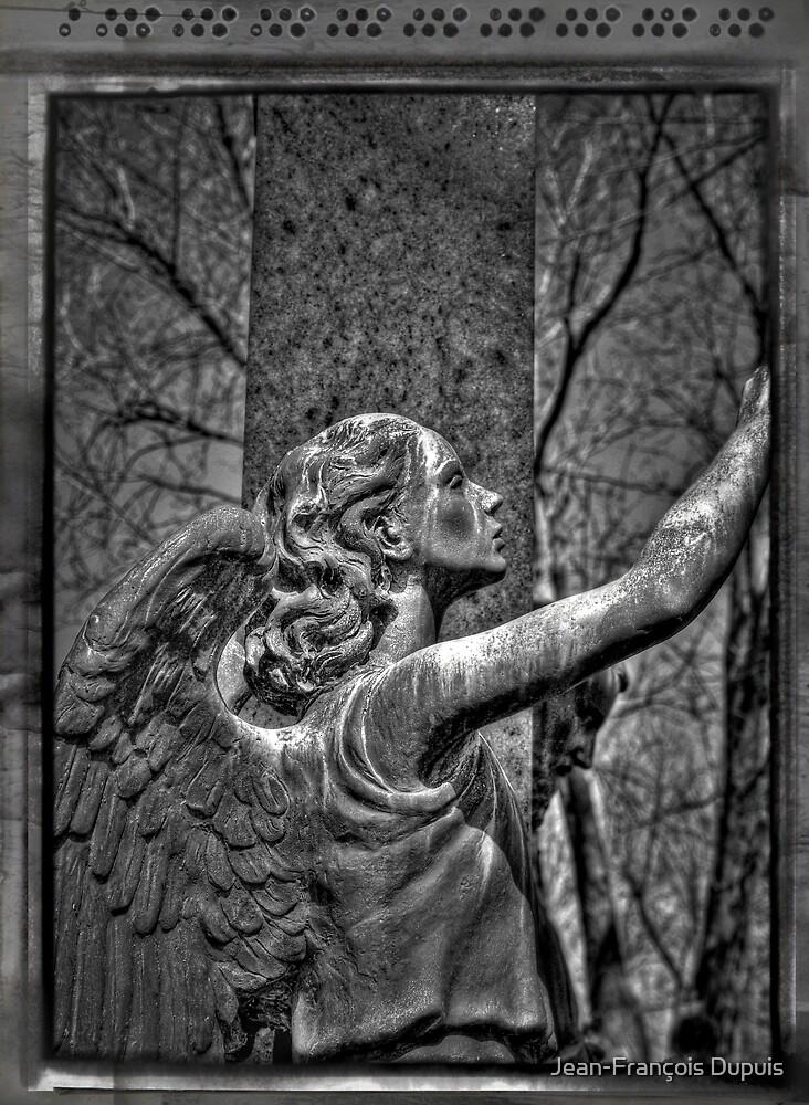 Notre-Dame-des-Neiges Cemetery  by Jean-François Dupuis