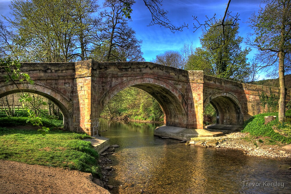 The Bridge near Scawton,North Yorkshire by Trevor Kersley