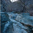 Darwin Creek- Death Valley by Leslie Sobel