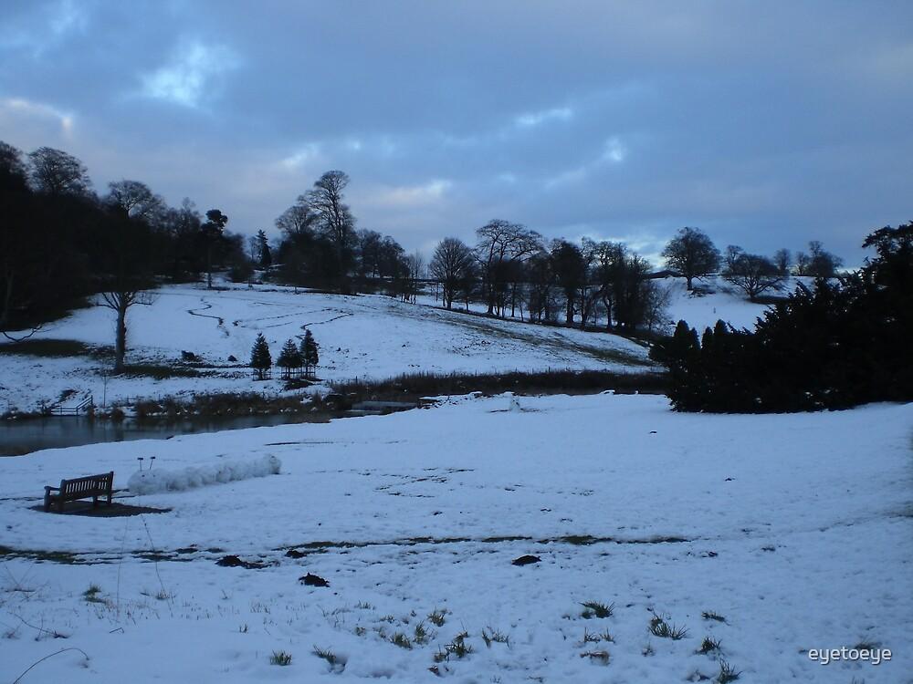 Winter Afternoon by eyetoeye