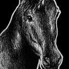 Leucism: Unicorn by NoelleMBrooks