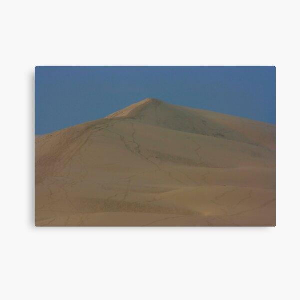 Dunes de Pyla Leinwanddruck