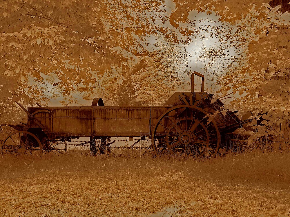 Rural Rust by Dennis Burlingham