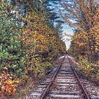 Steel Rails by Richard Bean