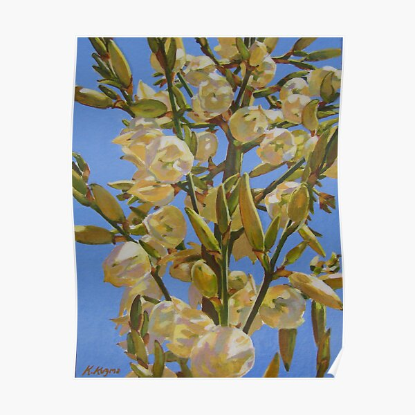 Yucca In Full Bloom II Poster