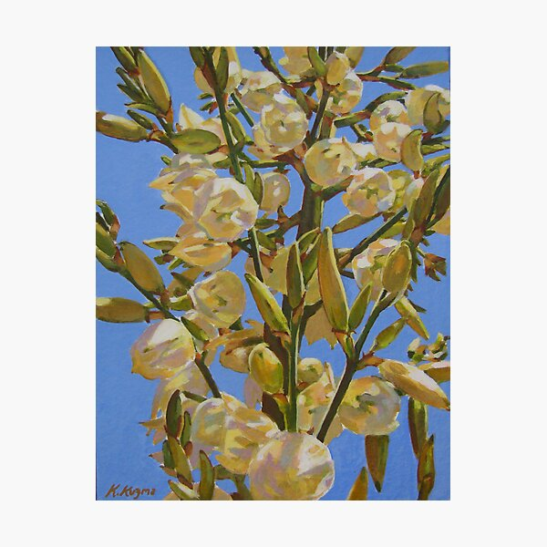 Yucca In Full Bloom II Photographic Print