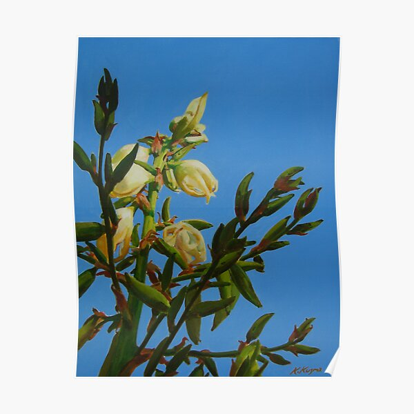Yucca Blooming II Poster
