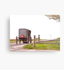 Country Traveler Metal Print