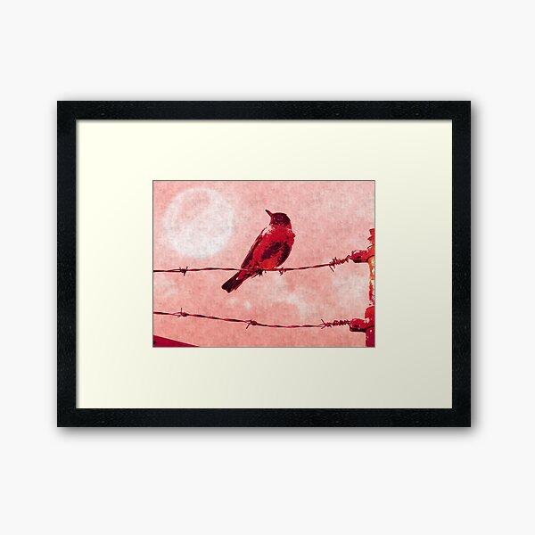 Bird on the Wire Framed Art Print