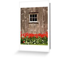 Red Tulips & Barn Greeting Card