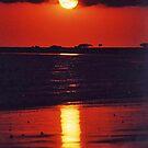 Sunrise, Cape Hillsborough, Queensland, Australia by Adrian Paul