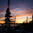 A Northern Sunset by TheNatureOfThings