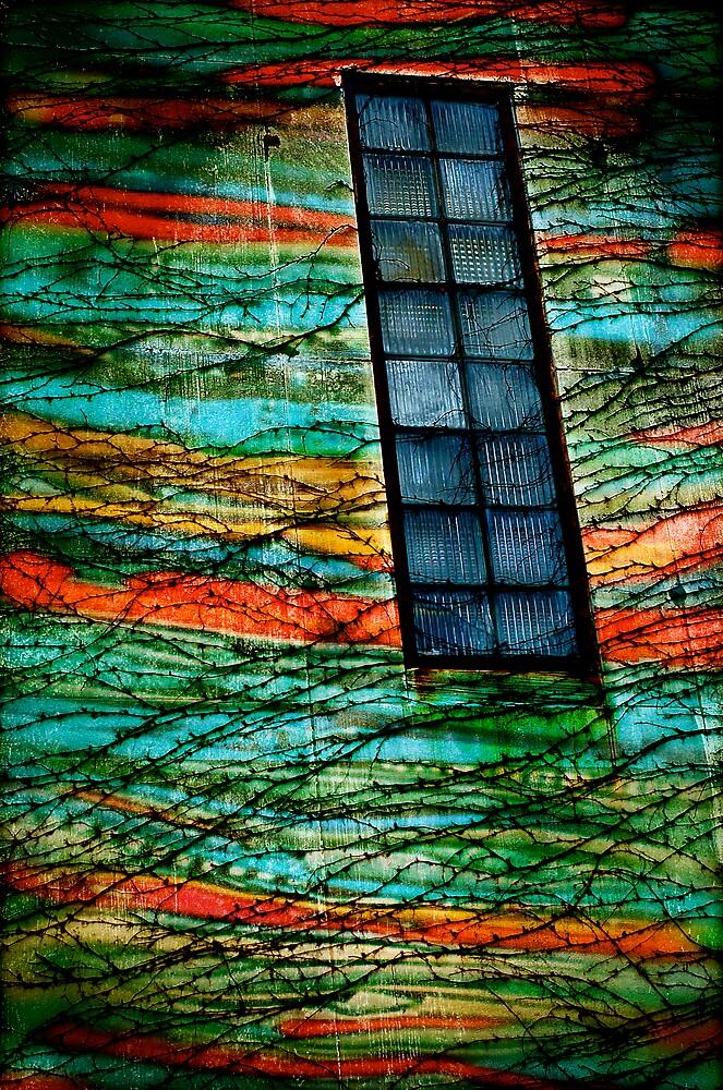 wonder wall by Brandon Myles Osman