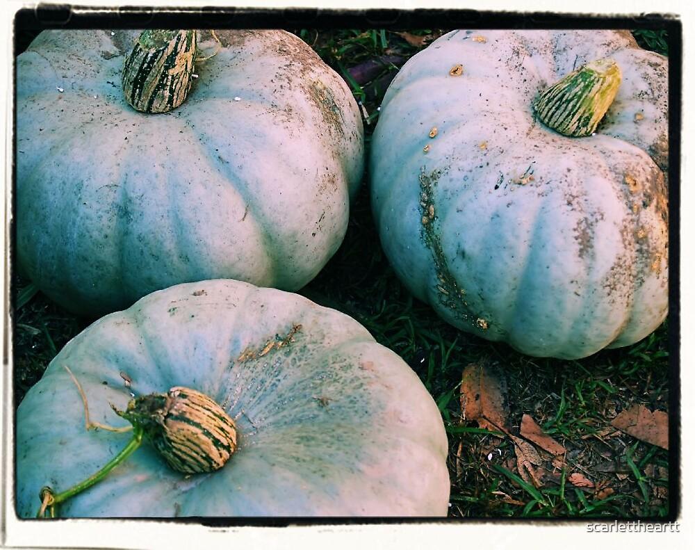 pumpkins by scarlettheartt