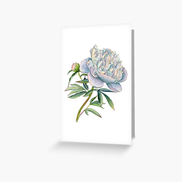 Peony in watercolor and ink by farrahdelle Greeting Card