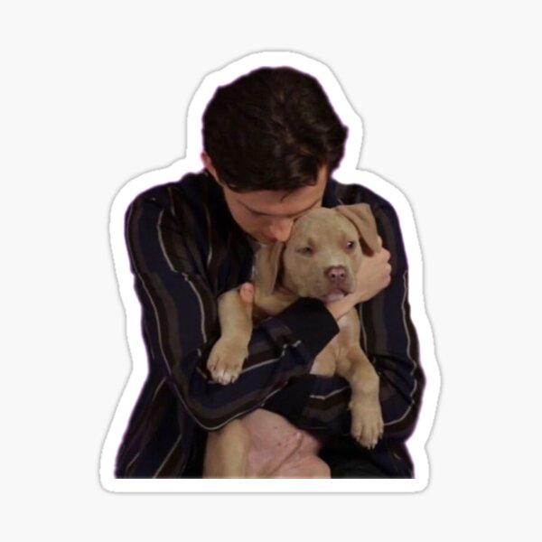 tom holland puppy interview  Sticker