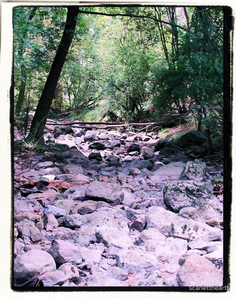 dry creek bed by scarlettheartt