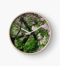 Spring Dream at Galicia . © Dr.Andrzej Goszcz. 27/04/2018. Clock