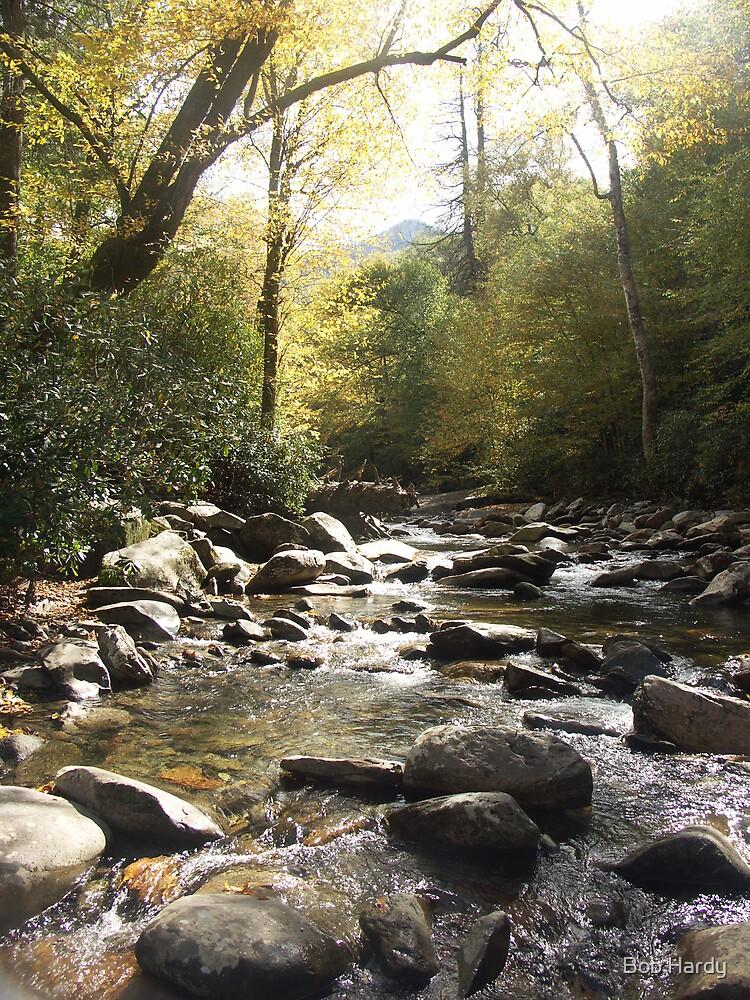 Smoky Mountain Stream by Bob Hardy