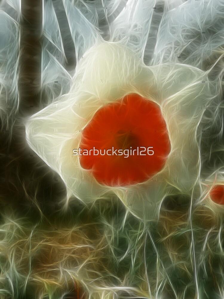 Daffodil by starbucksgirl26