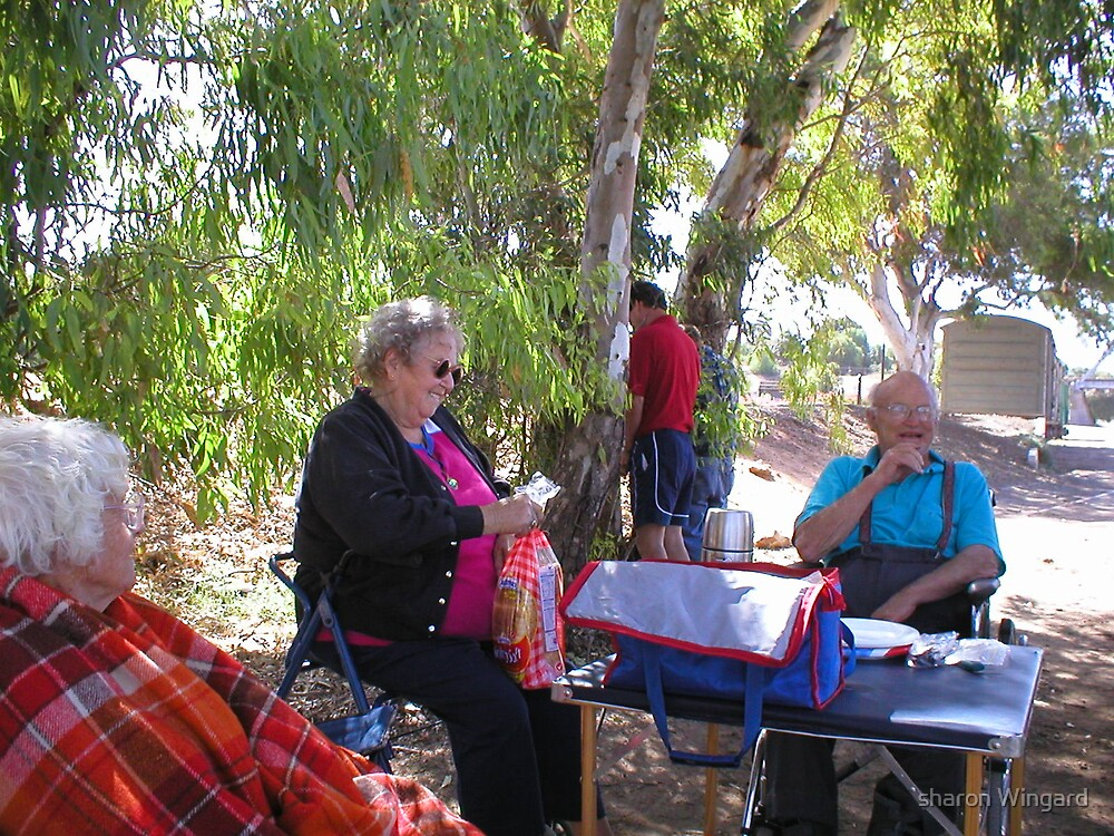 picnic in the bush by sharon Wingard