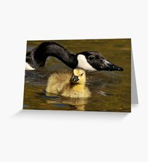 Mommy's Here Greeting Card