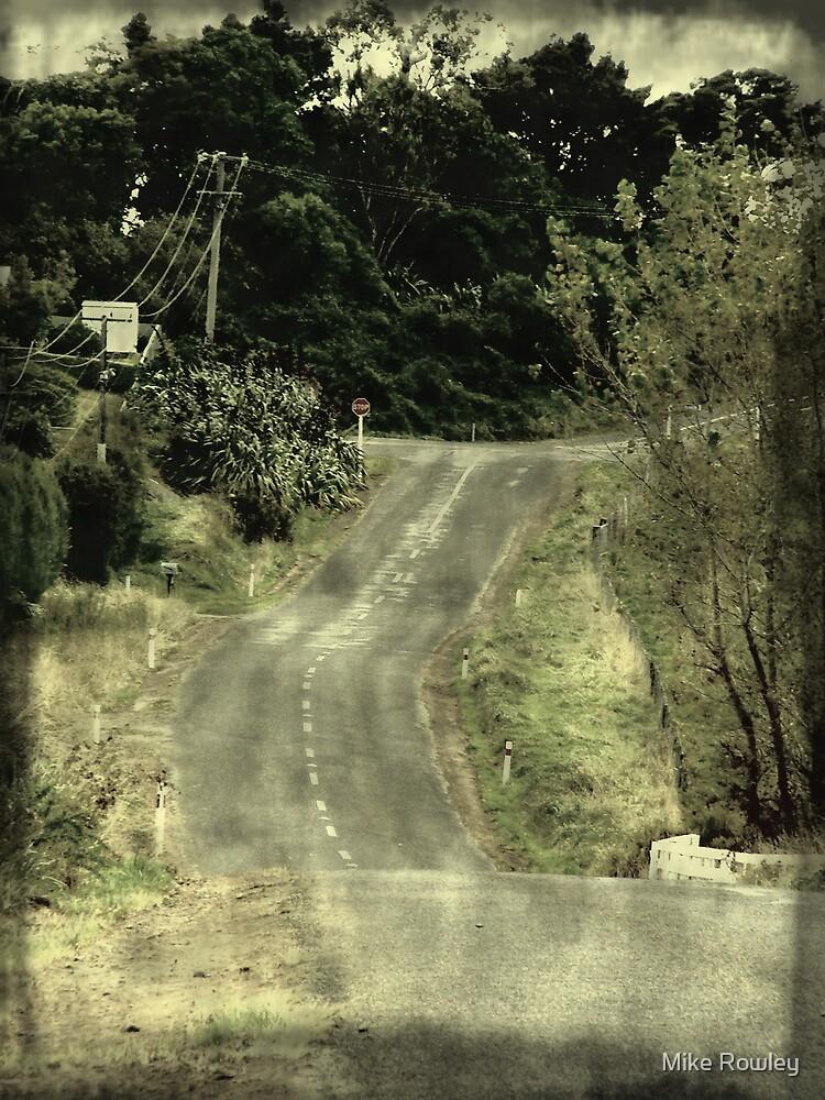 Awatapu Road by Mike Rowley